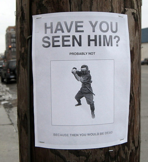 The Real Street Art 30 Hilarious Posters That Will Make You Giggle – Funny Missing Person Poster