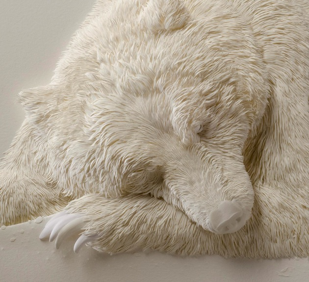 From Up Close It Looks Like A Sleeping Polar Bear But