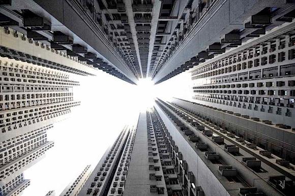 vertical-horizon-6