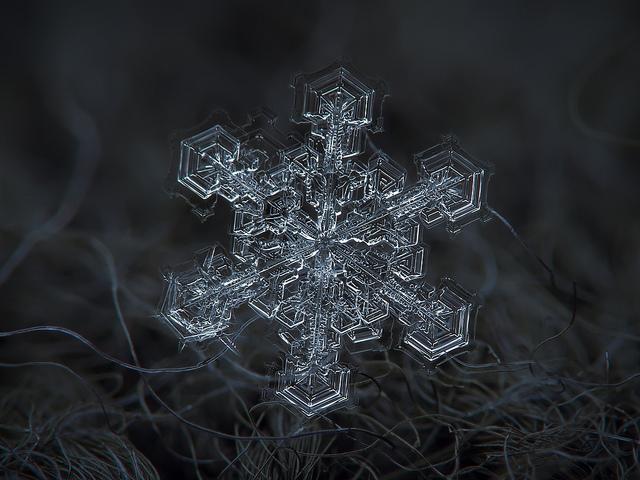 macro-snowflakes-10