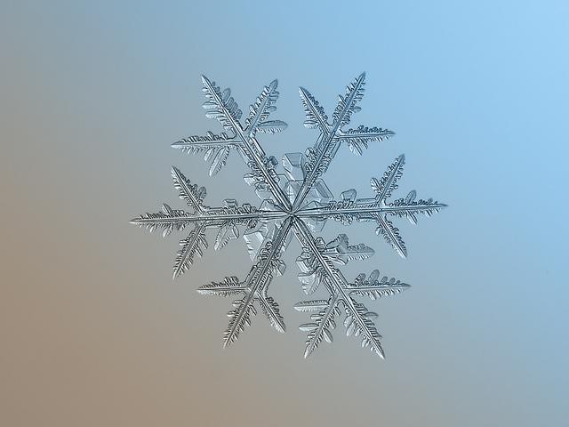 macro-snowflakes-12