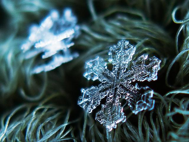 macro-snowflakes-5