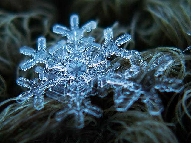 macro-snowflakes-6