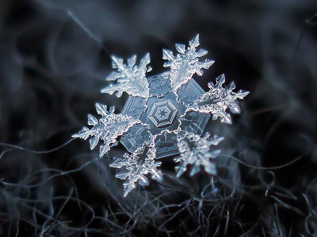 macro-snowflakes-8