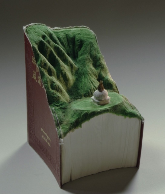 book-landscape-carvings-9