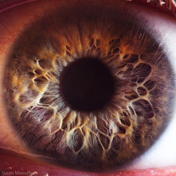 extremely-detailed-close-ups-eye-11