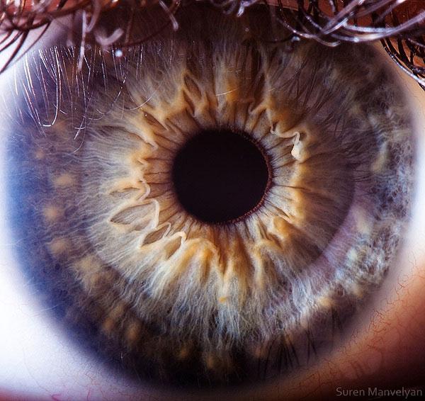 extremely-detailed-close-ups-eye-13