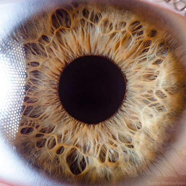 extremely-detailed-close-ups-eye-14