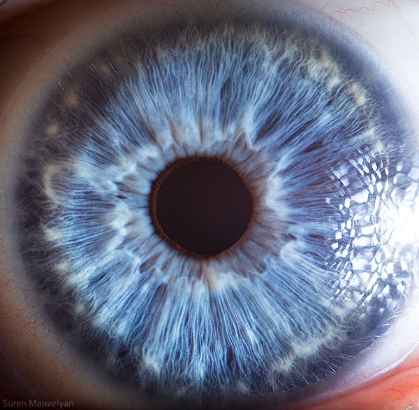 extremely-detailed-close-ups-eye-15