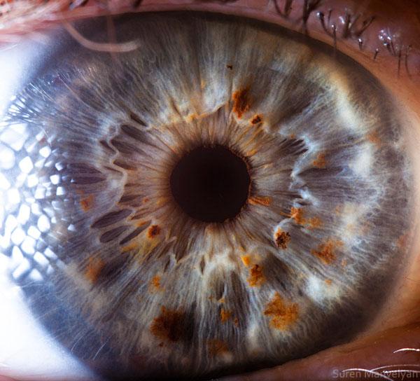extremely-detailed-close-ups-eye-16