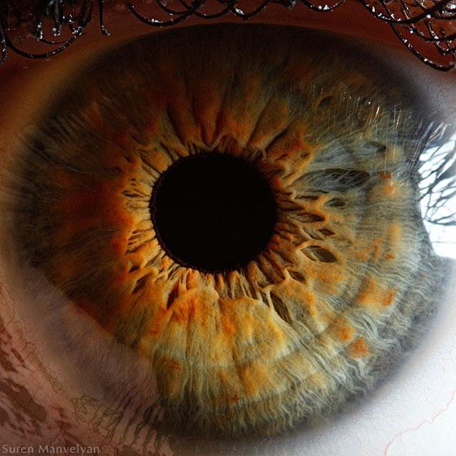 extremely-detailed-close-ups-eye-3