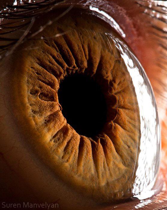 extremely-detailed-close-ups-eye-4