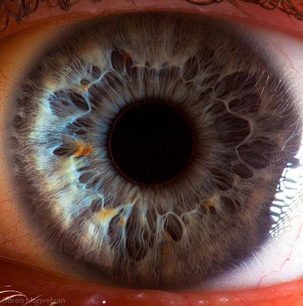 extremely-detailed-close-ups-eye-5