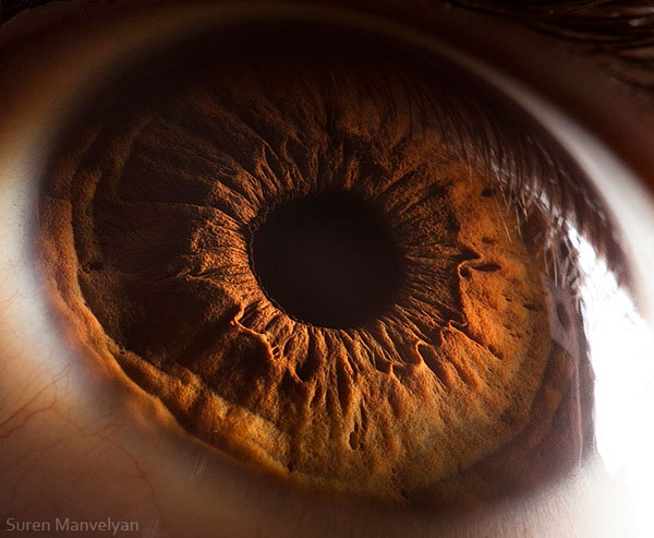 extremely-detailed-close-ups-eye-7