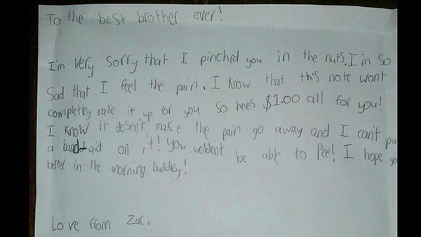 via http://www.news.com.au/lifestyle/relationships/nine-year-old-zacs-letter-of-apology-to-little-brother-for-pinching-his-nuts-hits-facebook/story-fnet0he2-1226615182109