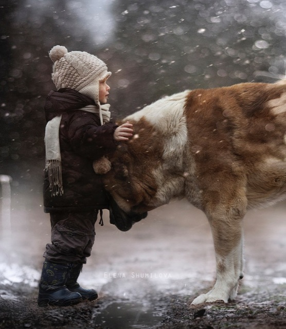 Mom takes emotional pics of her kids and animals in their ... - photo#2