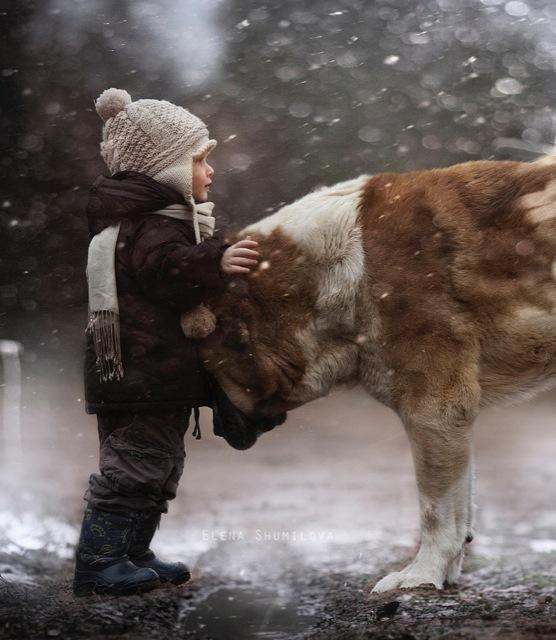 elena-shumilova-kids-animals-2