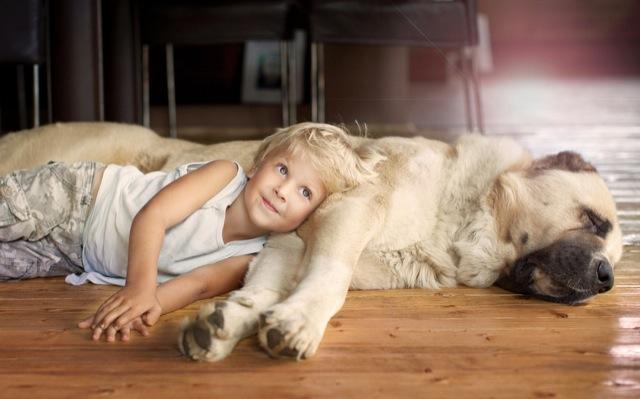 elena-shumilova-kids-animals-5