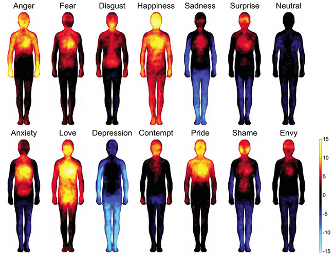 Curious Study Reveals How Our Body Reacts To Emotions - Curious study reveals how our body reacts to emotions