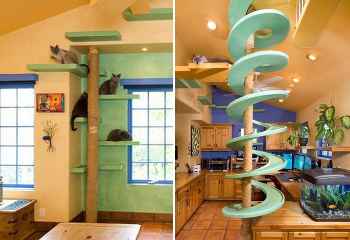 house-cat-playground