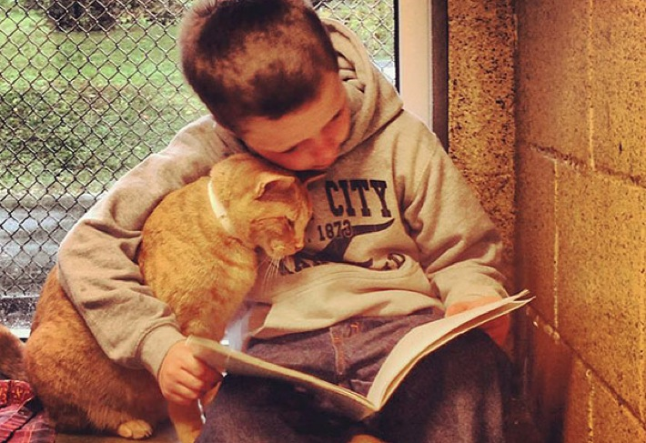 kids-read-books-to-cats-ft
