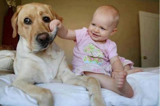 babies-need-pets-10