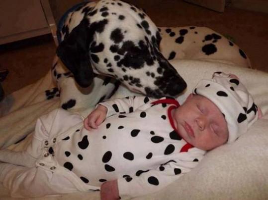 babies-need-pets-12