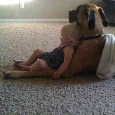babies-need-pets-14