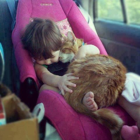 babies-need-pets-15