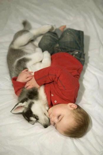 babies-need-pets-4