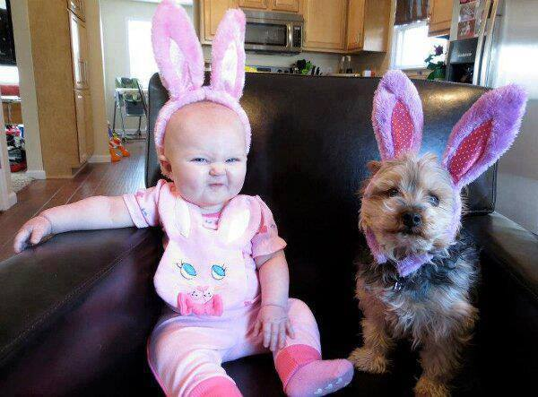 babies-need-pets-5