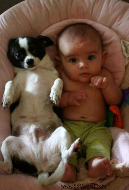 Adorable Photos Proving That Babies Really Need A Pet In Their Life - 23 adorable photos proving babies need pets