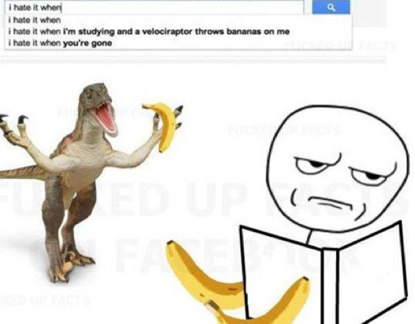 hilarious-google-searches-22