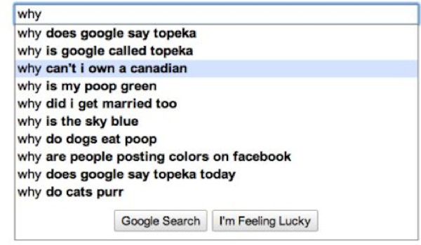 hilarious-google-searches-8