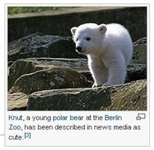 wikipedia-ridiculous-captions-16