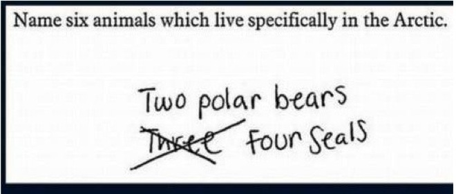 brilliant-kids-test-answers-14