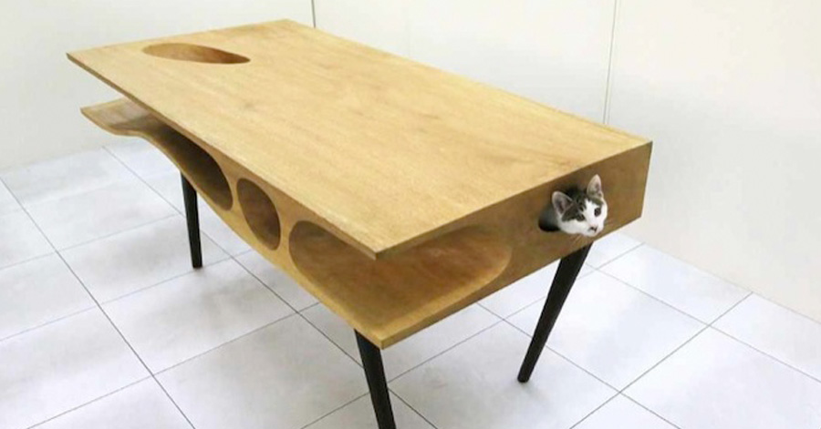 cat-table