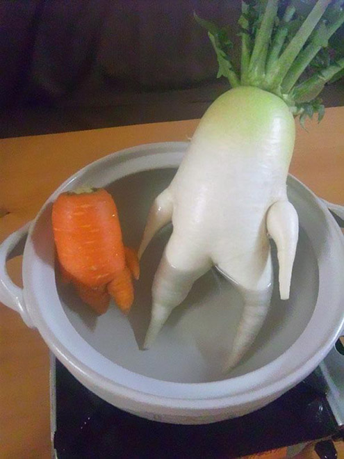 funny-vegetables-14