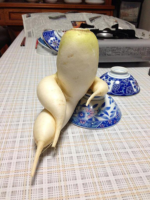 funny-vegetables-15