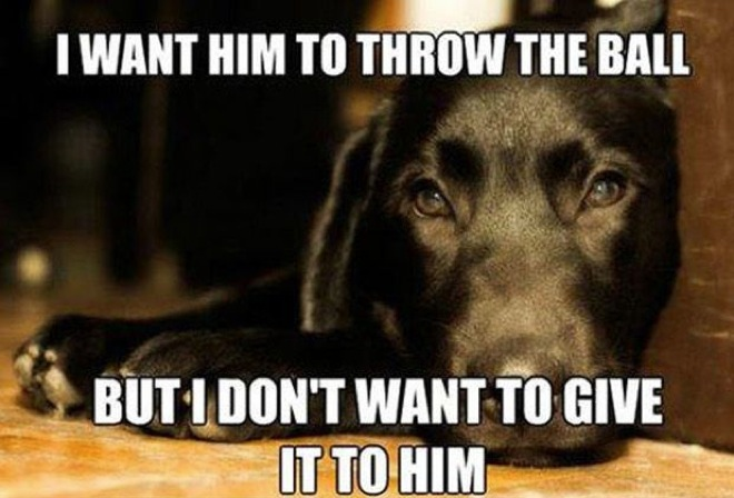 hilarious-dog-owners-situations-4