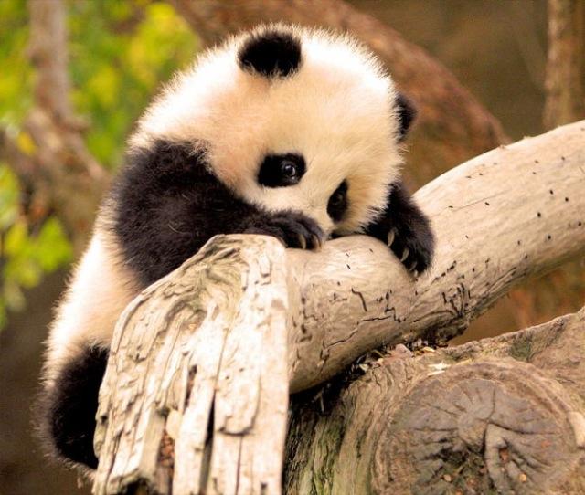 via onebigphoto.com