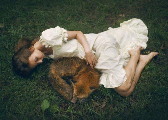 portraits-real-animals-3