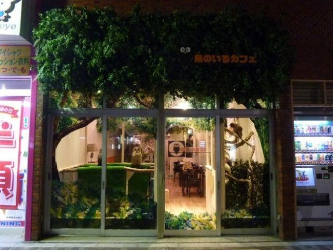 owl-cafe-japan-1