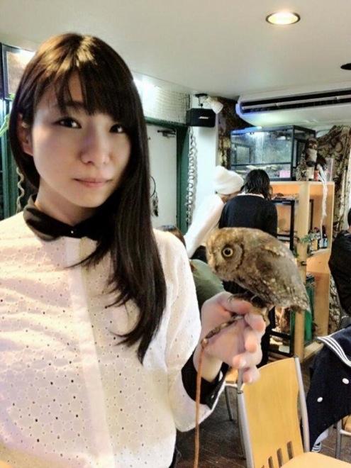 owl-cafe-japan-10