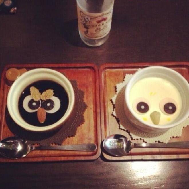 owl-cafe-japan-4