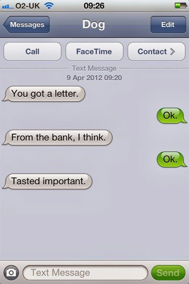 texts-from-dogs-14