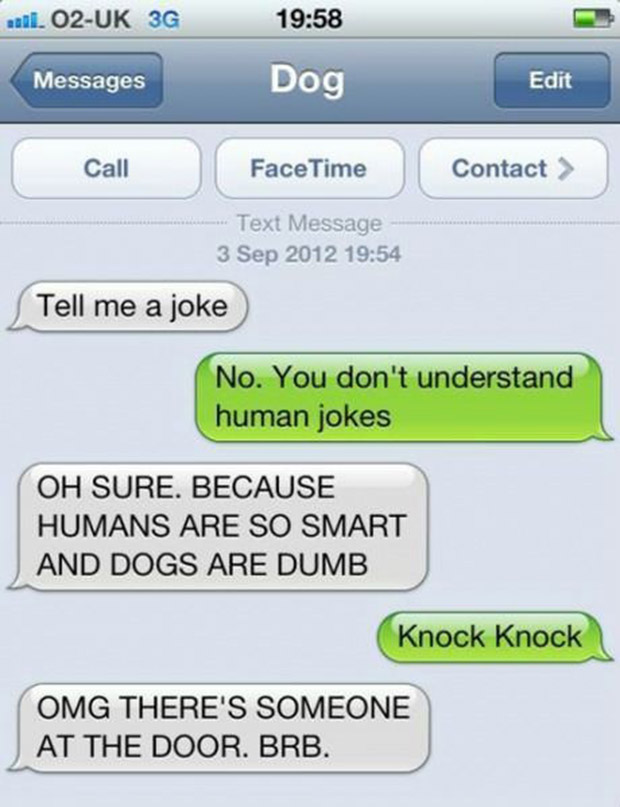 texts-from-dogs-16