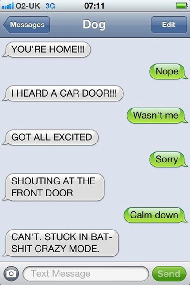 texts-from-dogs-22