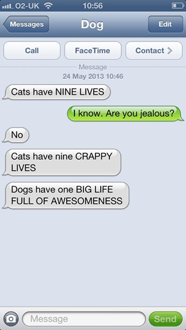 texts-from-dogs-25