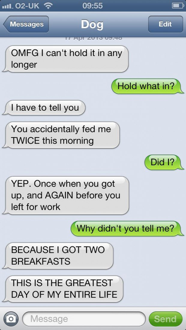 texts-from-dogs-28